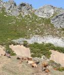 La Nueva España se hace eco del aspiraciones colonialistas asturianas